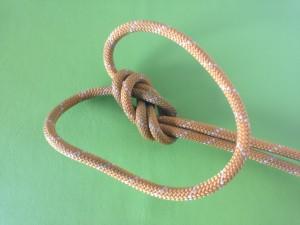 Fusion Knot (1)b